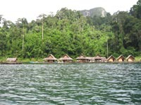 The rafthouse is a row of simple bamboo huts floating on the lake, nestled  in the jungle between the limestone karsts.