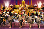 Book Tickets for Phuket Fantasea (Show and Dinner)